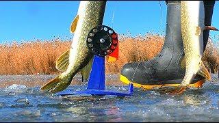 Рыбалка щука зимой на жерлицы