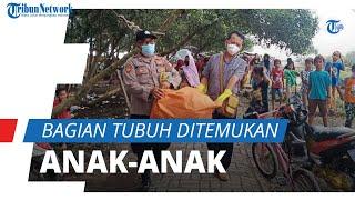 Berjarak 5 Mil dari Lokasi, Bagian Tubuh Diduga Korban SJ-182 Ditemukan Anak-anak saat Sepakbola