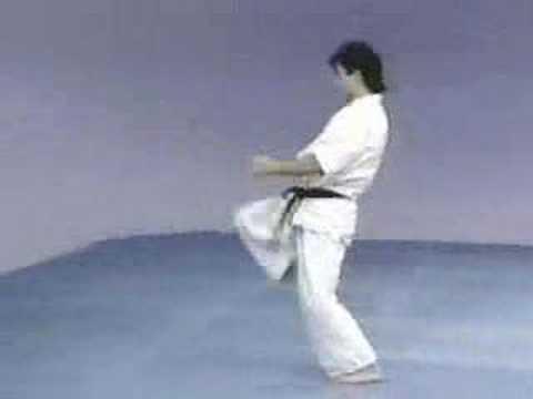 Sokugi Taikyoku sono ni Kyokushinkai kata