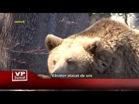 Vanator atacat de urs