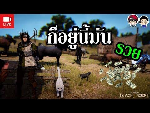 Black Desert Online (LIVE) - อยู่ที่นี้มันรวย