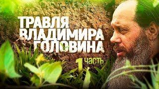 Травля Владимира Головина