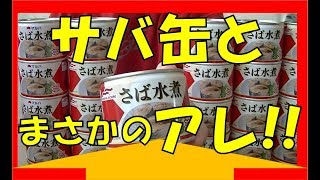 サバ缶と「アレ」を合わせる!スゲ~簡単美味しいレシピ