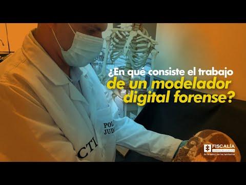¿En qué consiste el trabajo de un modelador digital forense?