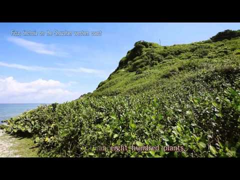 Shoushan National Nature Park 3mins short film (2013)