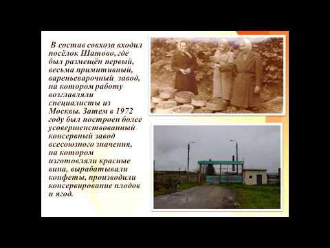 Летопись п. Центральный (Арсеньевский район Тульской области)