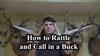 How to Rattle and Call in a Buck