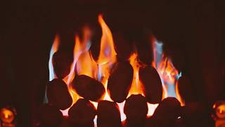 Campfire 1 Hour Nature White Noise For Sleep Studying or Relaxation