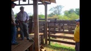 preview picture of video 'ZOOGENIA- CENTRO AGROVETERINARIO TIENE EN S I V TODO PARA EL GANADERO -(Red de Gad )'