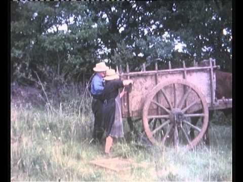 La pastorèla
