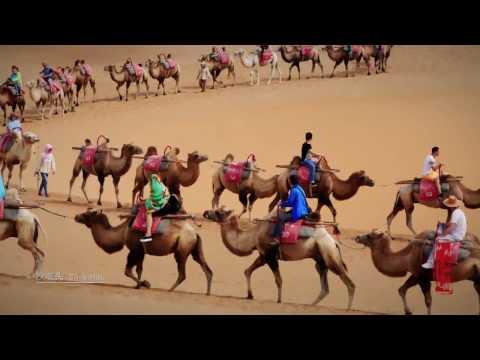 "welcome to "" Beautiful China, Amazing Ningxia"""