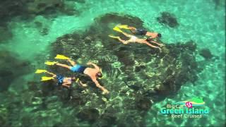 Snorkeling at Green Island