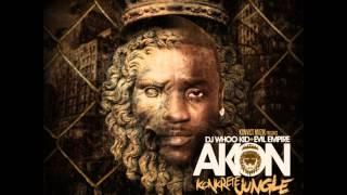 Akon - CaShin Out (Re-remix) [from mixtape Konkrete Jungle]