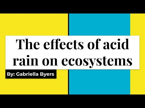 The Effects of Acid Rain on Ecosystems