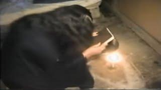 Mujer se convierte en mona en la localidad de San Andrés de la Palanca