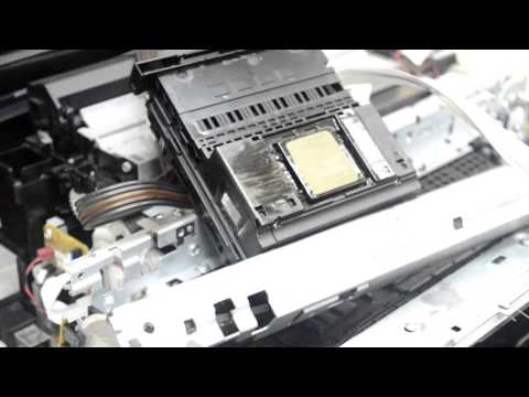 Ремонт epson xp 600 не допечатка листа, замятие бумаги + демонтаж каретки