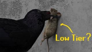 The City Animal Tier List