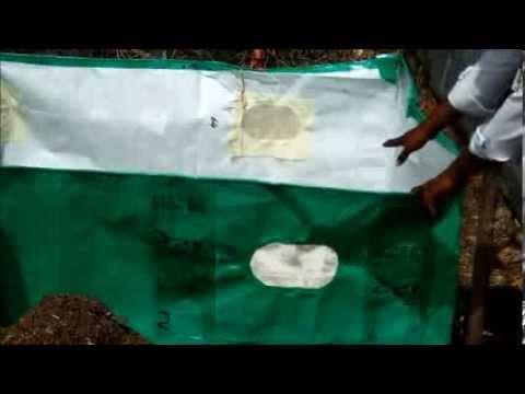 Il pinworms e lyambliya per trattare