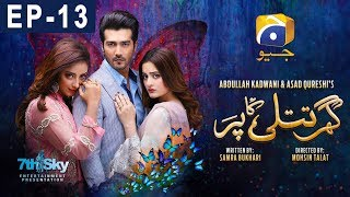 Ghar Titli Ka Par - Episode 13   Har Pal Geo