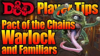 Game masters its not a dd novel its role playing game game pact of the chains warlock and familiars in your dungeons and dragons game dd player fandeluxe Choice Image