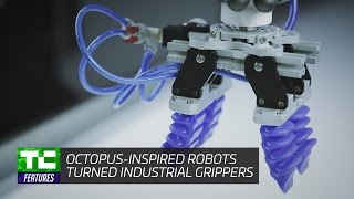 Soft Robotics' octopus-inspired robots industrial grippers