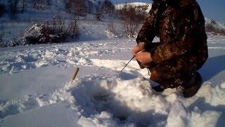 Рыбалка в контакте липецкой области