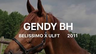 Gendy BH