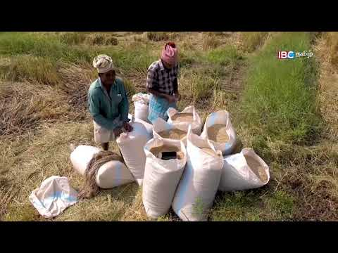 Maruthan Kulam, SriLanka | Vanakkam Thainadu Part | Youtube Search