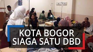 Kota Bogor Dinaikkan Menjadi Siaga 1 Demam Berdarah Dengue (DBD)