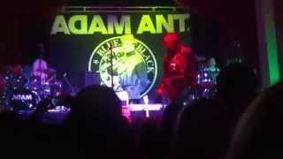 Adam Ant - Nine Plan Failed