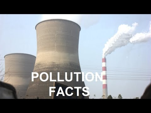 What are the Causes and Types of Pollution?