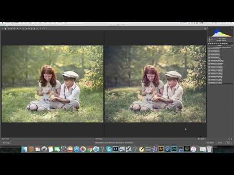 Lilia Alvarado Adobe Camera Raw Presets Tutorial