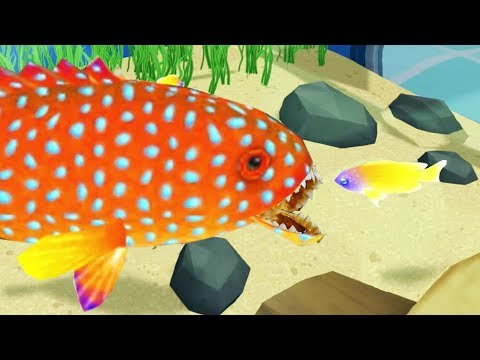Building a Carnivorous Fish Aquarium - Megaquarium Gameplay