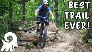 Such a fun trail!