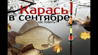 Почему рыба не клюет в сентября