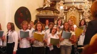 Evropská hymna