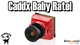 Caddx Baby Ratel. Will the baby of the best FPV camera perform as well? Supplied by Banggood