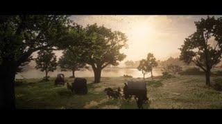 A Strange Kindness | Red Dead Redemption 2