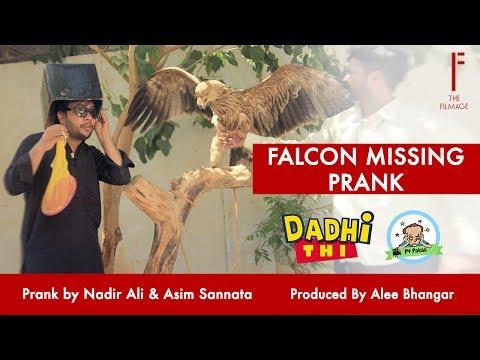 Falcon Missing Prank