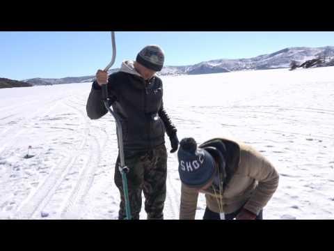Oncia Vologda bianco pesca regionale