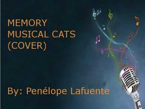 MEMORY   CATS COVER