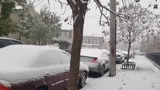 NOVEMBER 15 [ 2018]- START SNOWING IN NEW YORK CITY