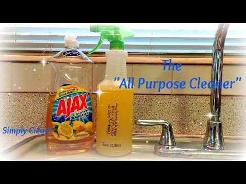 Tracie's Simple DIY All Purpose Cleaner and Disinfectant