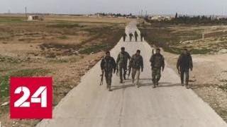 """Турция """"позаботится"""" о боевиках в Идлибе - Россия 24"""