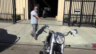 "Hunting Harleys, 1979 FLH ""80"""
