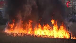 У Хмельницькому поблизу багатоповерхівок горить очерет