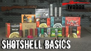 Ammo For Beginners: Shotshell Basics