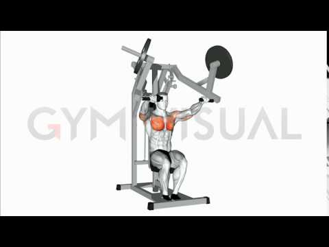 Lever Bench Press (plate loaded)