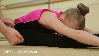Эстетическая гимнастика для детей / Нормативы ОФП и СФП для 1-го года обучения