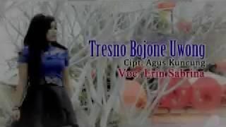 TRESNO BOJONE UWONG // ERIN SABRINA